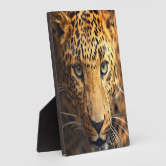 Brown Black Spotted Leopard Plaque