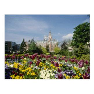 Brown Botanical gardens, Funchal, Madeira flowers Postcard