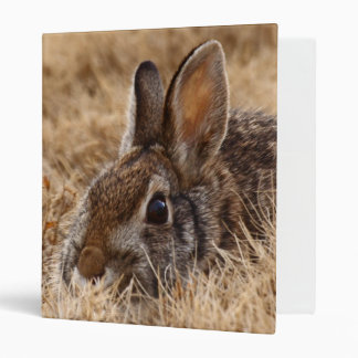 "Brown Bunny 1"" Avery Binder"