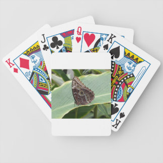 Brown Butterfly Bicycle Playing Cards