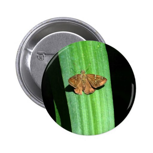 Brown Butterfly with Green Spots on Leaf Pinback Buttons