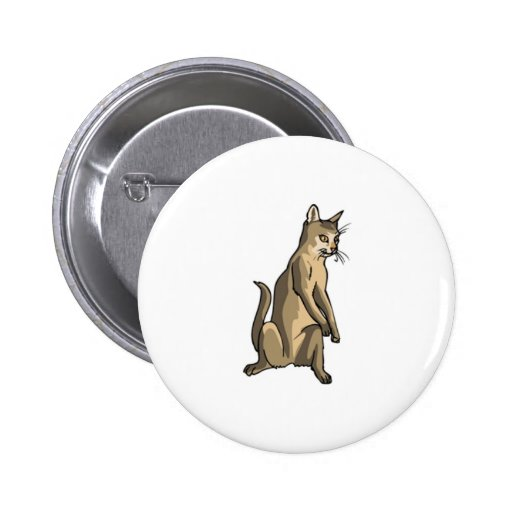 Brown Cat Sitting Buttons