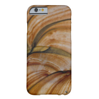 Brown colored Deschutes Jasper Barely There iPhone 6 Case
