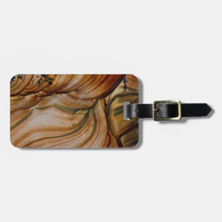 Brown colored Deschutes Jasper Luggage Tag