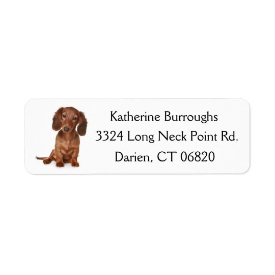 Brown Dachshund Puppy Dog Personalized
