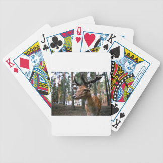 Brown Deer Near Trees Bicycle Playing Cards