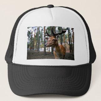 Brown Deer Near Trees Trucker Hat
