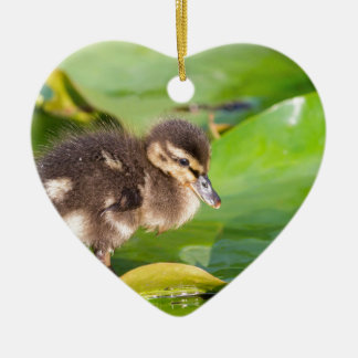 Brown duckling walking on water lily leaves ceramic heart ornament