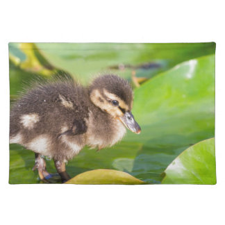 Brown duckling walking on water lily leaves placemat
