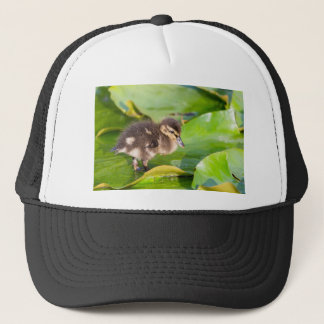 Brown duckling walking on water lily leaves trucker hat