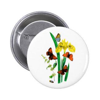 Brown et papillons bleus autour d iris jaune pin's avec agrafe