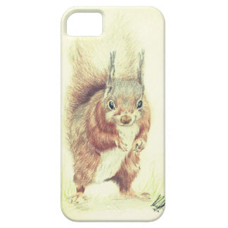 Brown Eye and Bushy Tailed iPhone 5 Cases