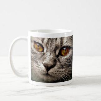 Brown Eyed Gray Cat Coffee Mug