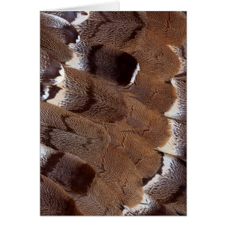 Brown Feather Design Card