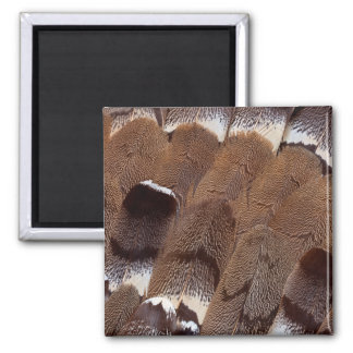 Brown Feather Design Magnet