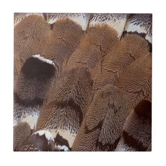Brown Feather Design Tile