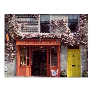 Brown Flower-covered bakery flowers Postcard