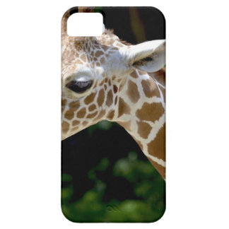 Brown Giraffe during Daytime Case For The iPhone 5