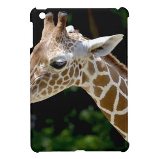 Brown Giraffe during Daytime Cover For The iPad Mini