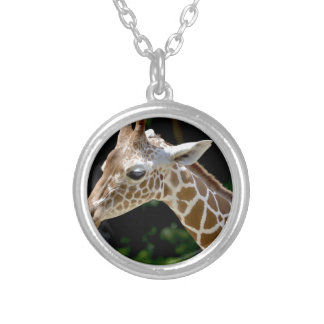 Brown Giraffe during Daytime Silver Plated Necklace