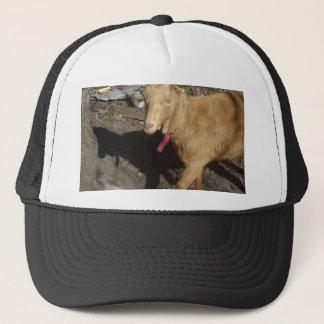 Brown Goat Trucker Hat