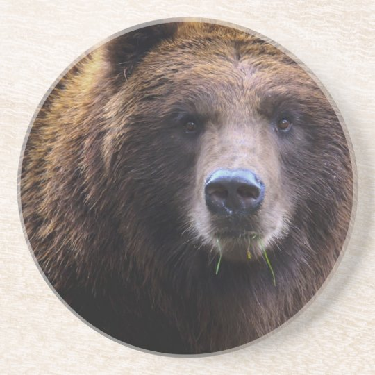 Brown Grizzly Bear Coaster