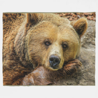 Brown Grizzly Bear on Fleece Blanket