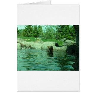 Brown Grizzly Bear swimming in a Pond by Trees Greeting Card