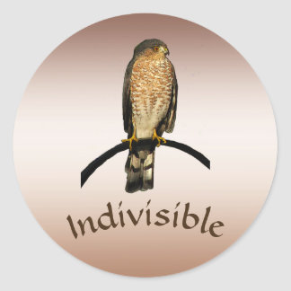 Brown Hawk Indivisible Stickers