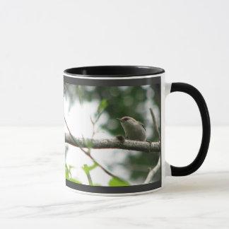Brown-headed Nuthatch Mug