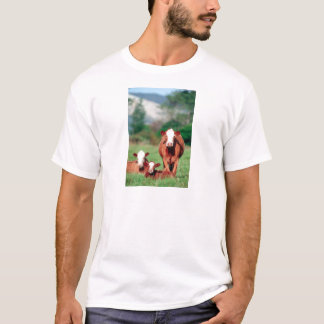 Brown hereford cattle T-Shirt