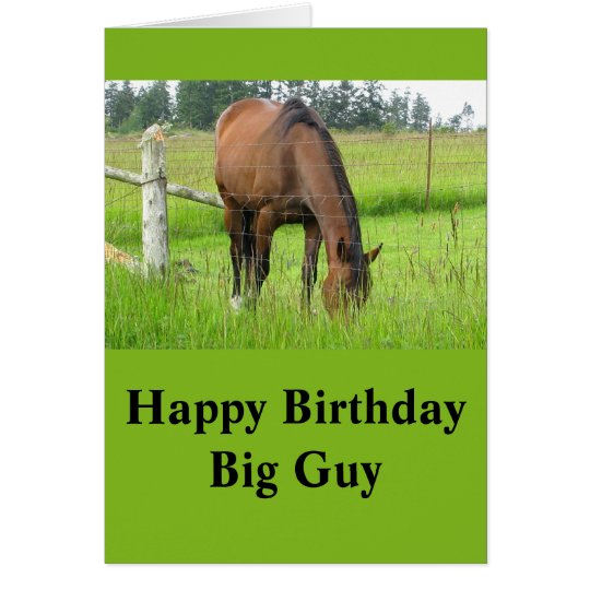 Brown Horse Eatting Grass in a Bright Green Field Card