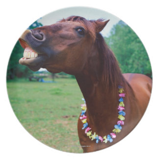 Brown horse wearing necklace, baring teeth, party plate