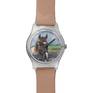 Brown Horse with Halter Watch