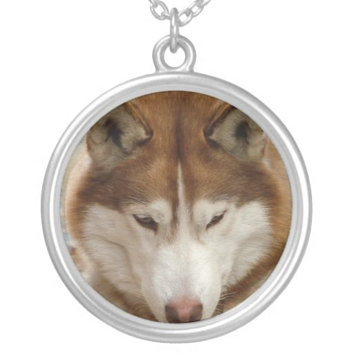 Brown Husky  Sterling Silver Necklace