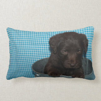Brown Labradoodle Puppy Decor Pillow