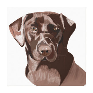Brown Labrador Canvas Print