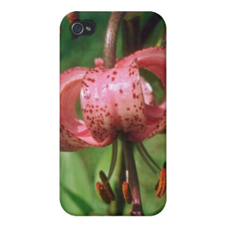 Brown led pink flowers case for iPhone 4