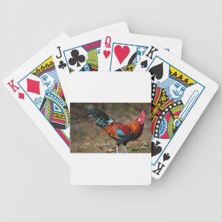 Brown Leghorn Rooster Bicycle Playing Cards