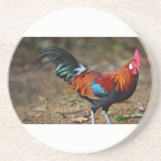 Brown Leghorn Rooster Coaster