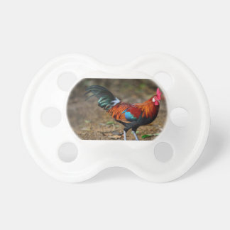 Brown Leghorn Rooster Pacifier