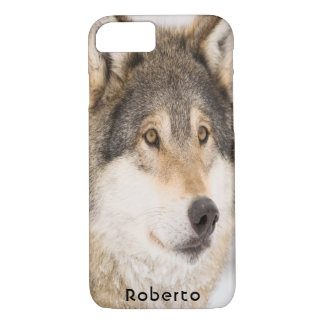 Brown male wolf smiling iPhone 8/7 case