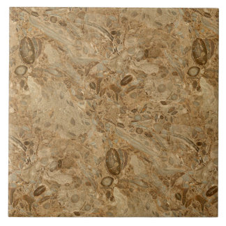 Brown Marble Fossil Look Tile
