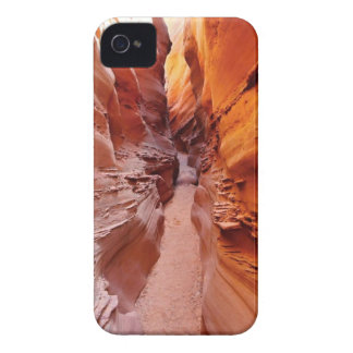 Brown Mountain Pathway Case-Mate iPhone 4 Cases