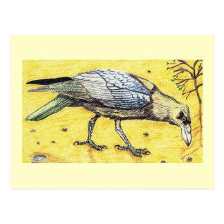 Brown Necked Raven Postcard