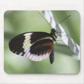 Brown noir et papillon blanc Mousepad Tapis De Souris