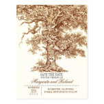 brown old oak tree save the date postcards