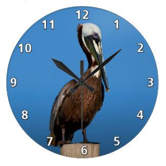Brown Pelican Bird on a Post Clock