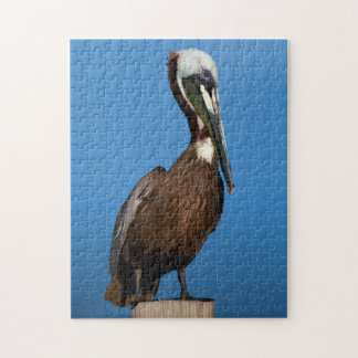 Brown Pelican Bird on a Post Puzzles