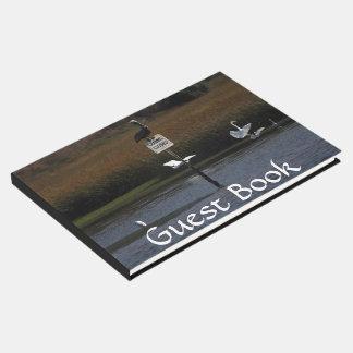 Brown Pelican Bird Wetlands Wildlife Guest Book